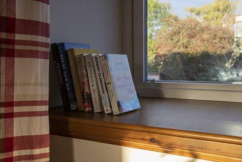 Books in window.jpg