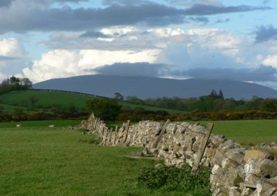 rolling-pasture-cairnsmore